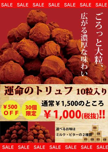toryufu350.jpg